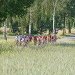 Rennrad fahren in der Heideregion Uelzen